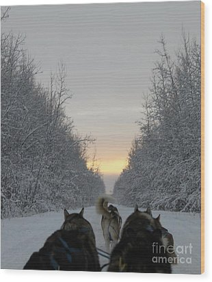 Mushing Into The Sunset Wood Print by Tanja Hymel