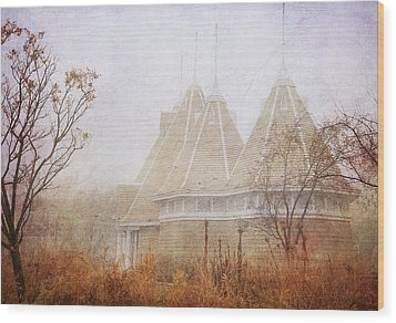 Wood Print featuring the photograph Music And Fog by Heidi Hermes