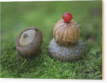 Wood Print featuring the photograph Musing With Nature by Dale Kincaid