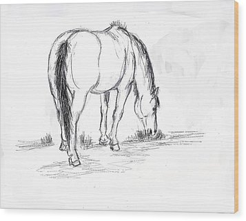 Mustang Mare Field Sketch Wood Print by Dawn Senior-Trask