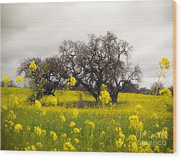 Wood Print featuring the photograph Mustard And Oaks by Leslie Hunziker