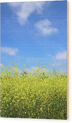 Mustard Beauty Wood Print by Timothy OLeary