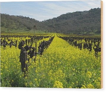 Mustard In The Vineyards Wood Print by Kim Pascu