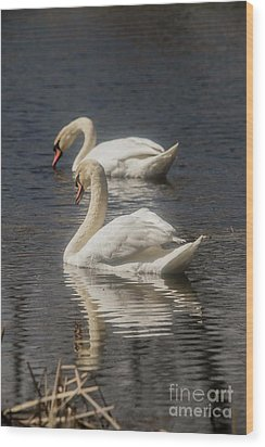 Wood Print featuring the photograph Mute Swans by David Bearden