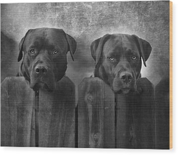 Mutt And Jeff Wood Print by Larry Marshall