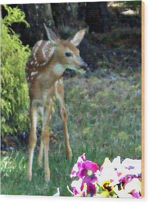 My Deer Friend...... Wood Print