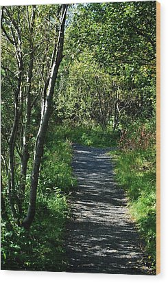 My Favorite Path Wood Print