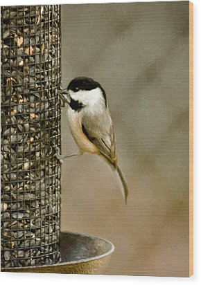 My Favorite Perch Wood Print by Lana Trussell