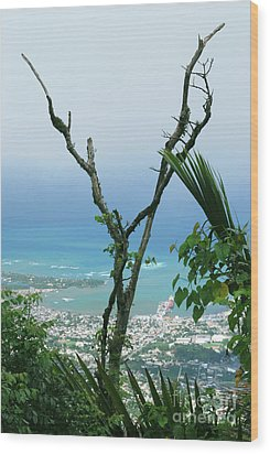 My Favorite Wishbone Between A Mountain And The Beach Wood Print