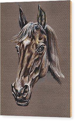 My Horse Portrait Wood Print by Daliana Pacuraru