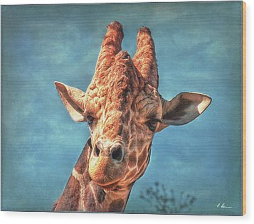Wood Print featuring the photograph My Name Is Bingwa by Hanny Heim