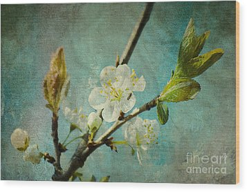 My Springtime Wood Print by Angela Doelling AD DESIGN Photo and PhotoArt