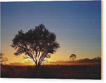 Myakka Sunrise Wood Print