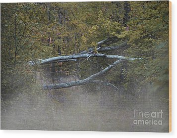 Wood Print featuring the photograph Mystery In The Fall by Skip Willits