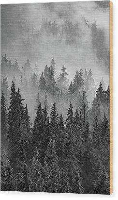 Mystic  Wood Print by Dustin LeFevre