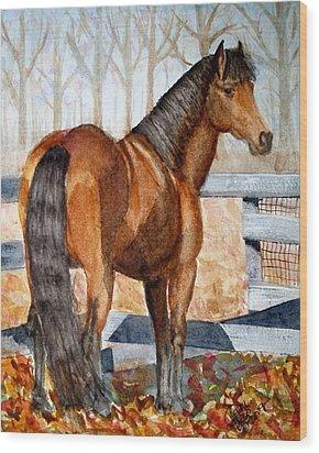 Mystic In Her Paddock Wood Print by Cheryl Dodd