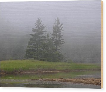 Mystical Acadia National Park Wood Print by Juergen Roth
