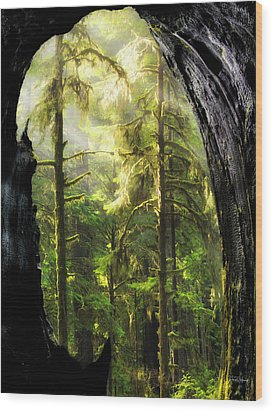 Mystical Forest Opening Wood Print by Leland D Howard