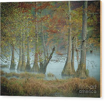 Wood Print featuring the photograph Mystical Mist by Iris Greenwell