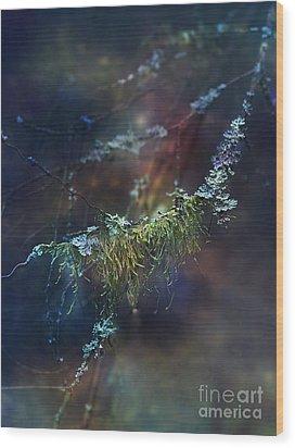 Mystical Moss - Series 2/2 Wood Print