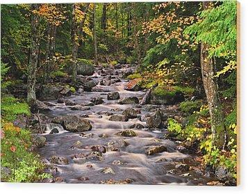 Mystical Mountain Stream Wood Print by Brad Hoyt