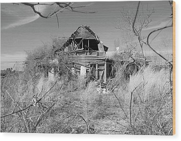 Wood Print featuring the photograph N C Ruins 2 by Mike McGlothlen