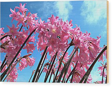 Wood Print featuring the photograph Naked Ladies by Vivian Krug Cotton