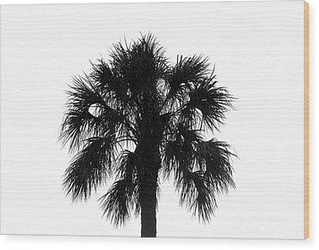 Naked Palm Wood Print by David Lee Thompson