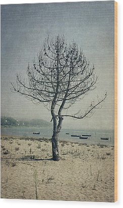 Wood Print featuring the photograph Naked Tree by Marco Oliveira