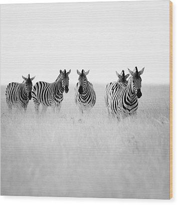 Namibia Zebras II Wood Print by Nina Papiorek