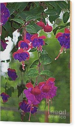 Nan's Fushia Wood Print by Gwyn Newcombe