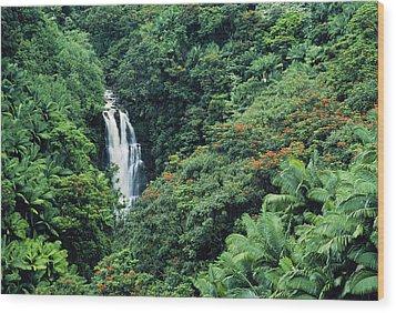 Nanue Falls Hawaii Wood Print by Greg Vaughn