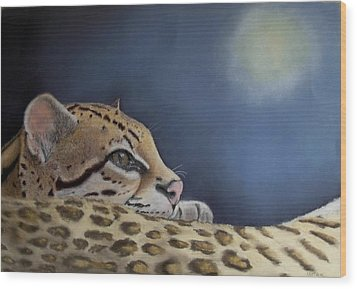 Wood Print featuring the painting Nap Time  by Ceci Watson