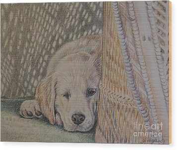 Nap Time Wood Print by Gail Dolphin