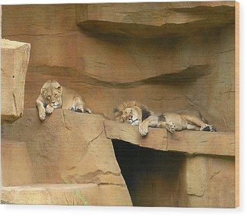 Nap Time Wood Print by Leeann Stumpf