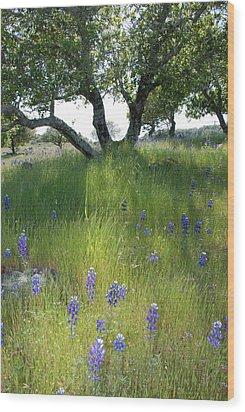 Napa Hills Meadow Wood Print by Dallas Hyatt