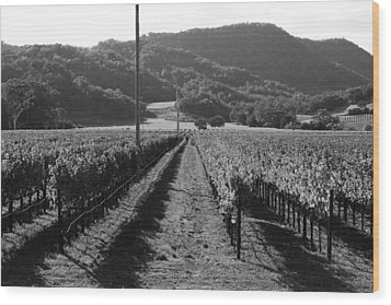 Napa Valley Vineyard .  Black And White . 7d9020 Wood Print by Wingsdomain Art and Photography