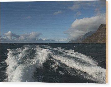 Napali Coast Wood Print by Andrei Fried