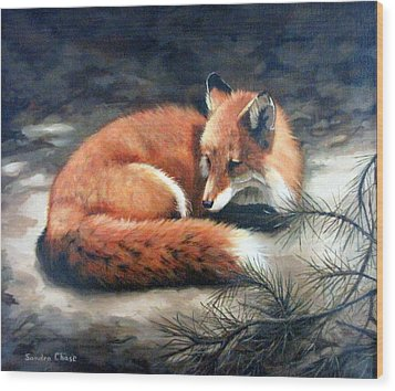 Wood Print featuring the painting Naptime In The Pine Barrens by Sandra Chase