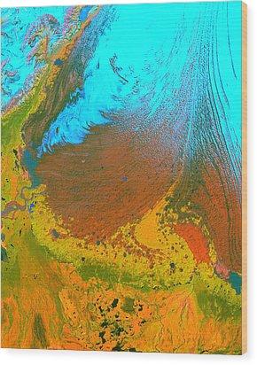 Nasa Image-malaspina Glacier, Alaska-glacier-2 Wood Print