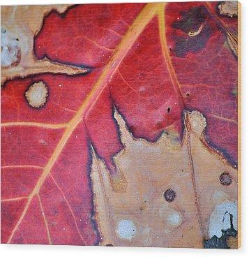 Nat. Abstr. 8 Fc Wood Print