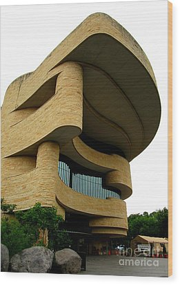 National Museum Of The American Indian 1 Wood Print by Randall Weidner
