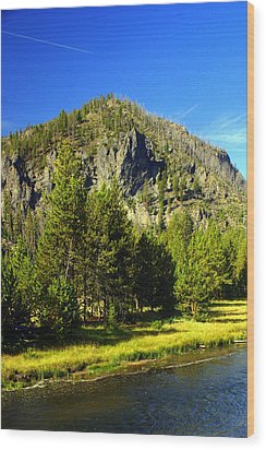 National Park Mountain Wood Print by Marty Koch