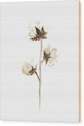 Natural Cotton Wall Hanging Wood Print by Joanna Szmerdt