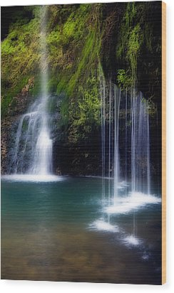 Natural Falls Wood Print by Lana Trussell
