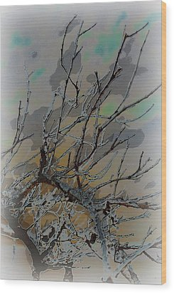 Natural Inversion - 2 Wood Print