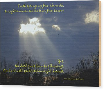 Wood Print featuring the photograph Natural Lamb Cloud Nlt by Robin Coaker