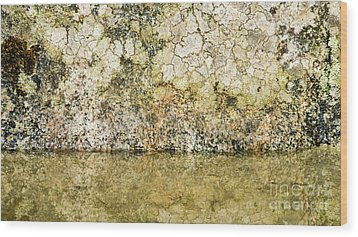 Wood Print featuring the photograph Natural Stone Background by Torbjorn Swenelius