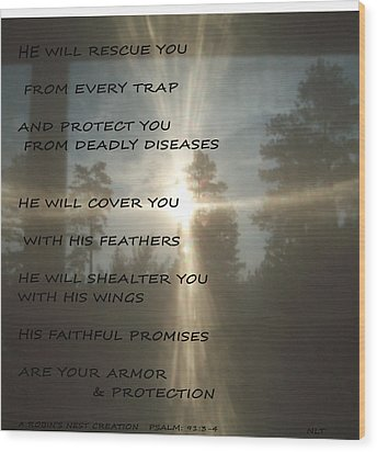Wood Print featuring the photograph Natural Sun Cross Psalm Nlt by Robin Coaker