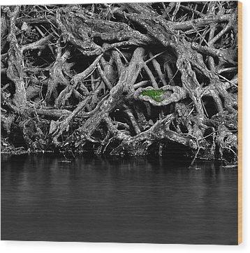 Natural Weaves Wood Print by Mark Fuller